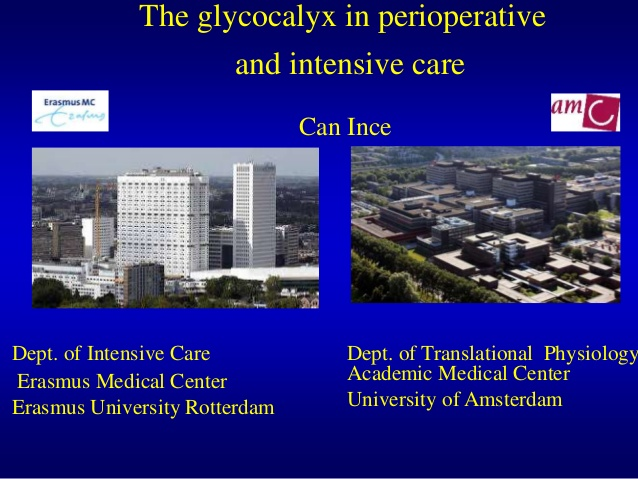 The glycocalyx in perioperative and intensive care