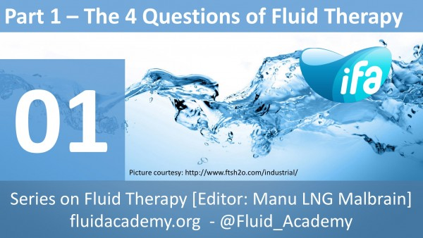 The four questions of fluid therapy (Part 1.6.)