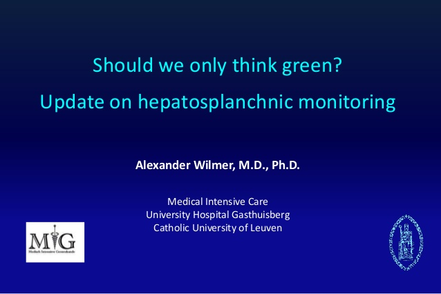 Alexander Wilmer - Update on hepatosplanchnic monitoring - IFAD 2012