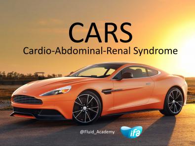 Understanding CARS (#ISICEM18 #IFAD2018)